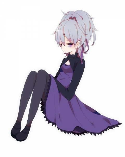 Darker than Black, Yin, Dress, Female, Gray Hair, Pantyhose, Simple Background, Solo, Purple Eyes, Ponytail