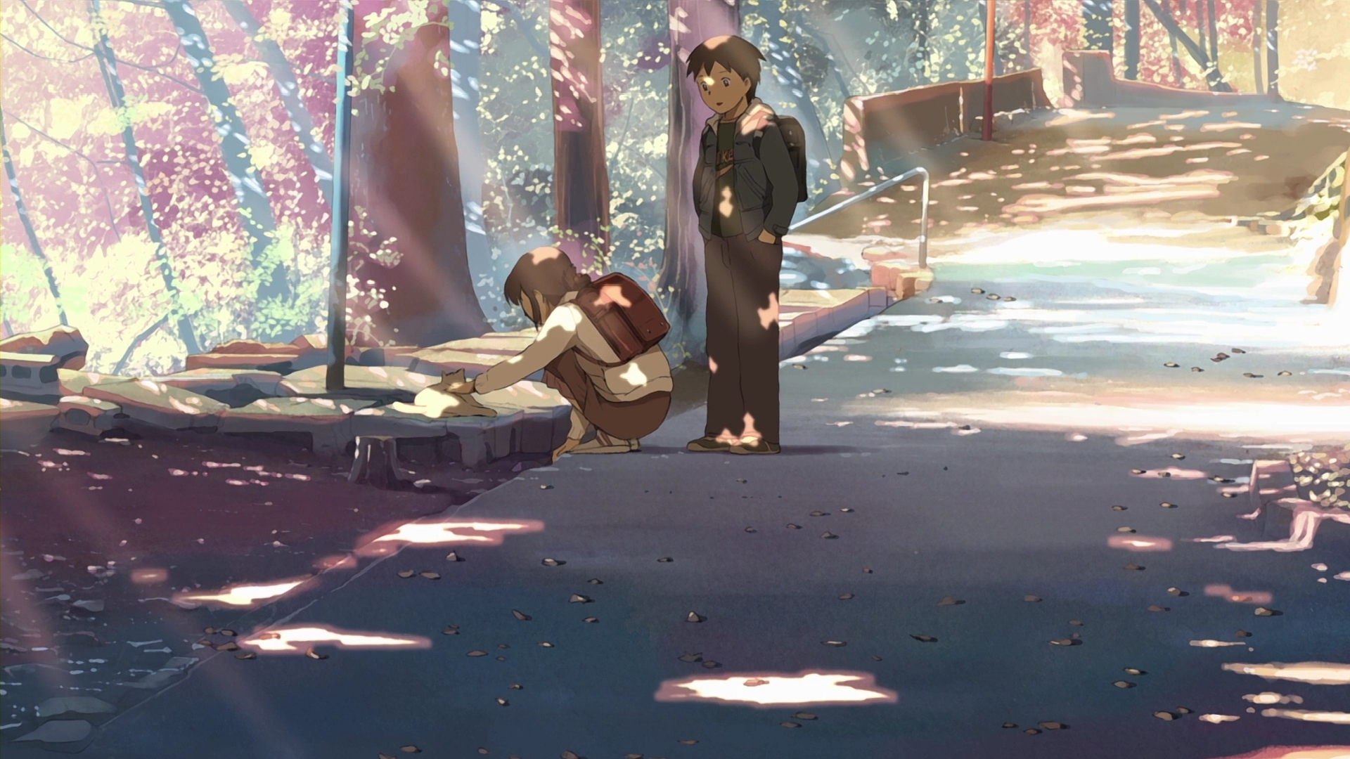 5 Centimeters per Second, Wallpaper