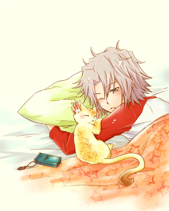 Katekyo Hitman Reborn!, Hayato Gokudera, Silver hair, Half Awake, Cats, Pillow, Blanket, Cellphone, Neck Length Hair, One Eye Showing