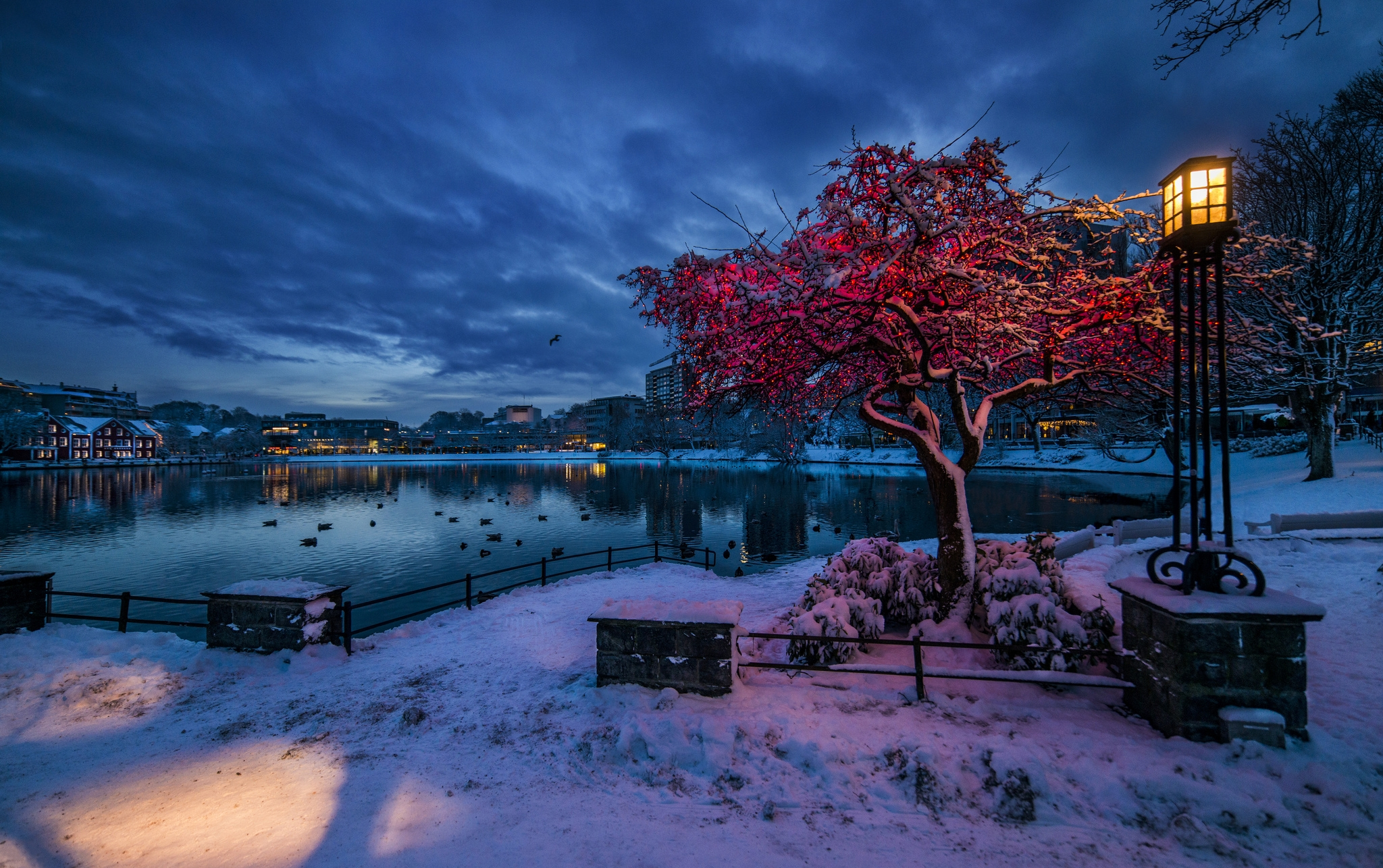Scenery, Wallpaper, Nature, Snow, Water, Night