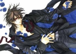 Blue Rose, Flower, Studio Deen, Kaname Kuran, Blue Rose, Male, Rose, Short Hair, Vampire, Solo, Vampire Knight