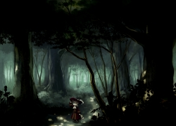 Dioptrie, Pixiv Forest Artbook, Forest, Nature, Night, Tree, Pixiv