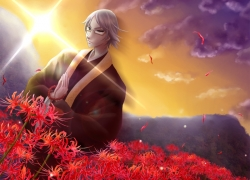Flower, Seishin Muroi, Shiki, White hair, Wallpaper, Spider Lily, Praying, Male, 800x600 Wallpaper, Glasses, Clasped Hands, Wallpaper 4:3 Ratio
