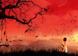 Solo, Red Sky, Swing, Tree, Birds