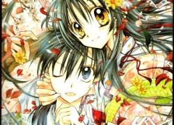 Full Moon o Sagashite, Black Hair, Yellow Eyes, Blue Eyes, Male, Female, Takuto, Mitsuki Kouyama, Flowers, Full Moon Wo Sagashite, Yellow Flowers, White Flower, Kimono, Traditional Clothes, Couple, Tongue, Hair Flower