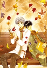Touya Kinomoto, Mad House, Yukito Tsukishiro, Closed Eyes, CLAMP, Autumn, Leaves, Duo, Leaning Against Each Other, Male, Shounen Ai, Sleeping, Two Males, Yaoi, Cardcaptor Sakura