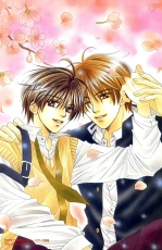 Flower, Yamato Nase, Scan, Male, Brown Hair, Short Hair, Couple, Two Males, Cherry Tree, Duo, Yaoi, Manga Color, Cherry Blossom