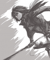 SNK, Mikasa Ackerman, Shingeki no Kyojin, Attack on Titan