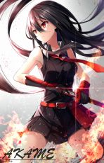 Akame, Akame ga KILL!, Belt, Black Hair, Breasts, Collar, Collarbone, Elbow Gloves, Fire, Gloves, Long Hair, Looking Away, Red Eyes, Skirt, Solo, Sword, Weapon